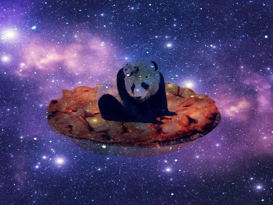 Panda Space Exploration by danielleashleyy on DeviantArt