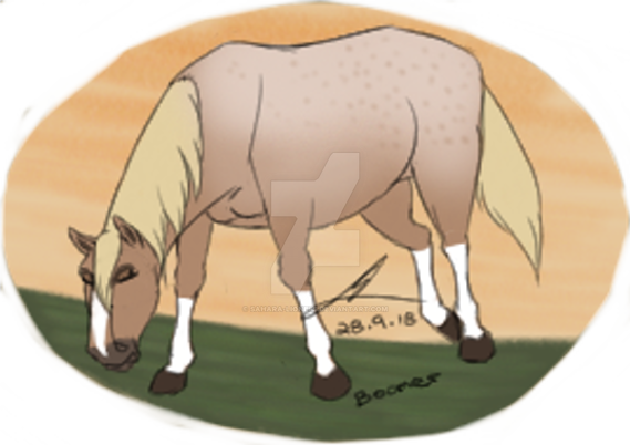 Boomer - Breedable by Sahara-lioness on DeviantArt