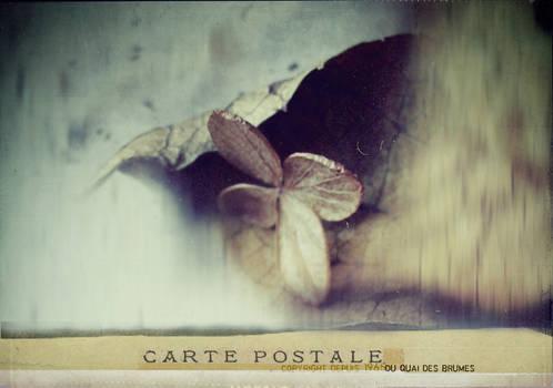 carte postale - 018