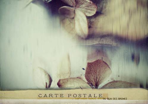carte postale - 019