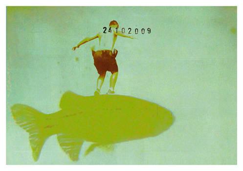 carte postale - 023