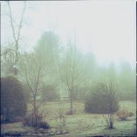 novembre by laflaneuse