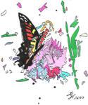 Butterfly2010