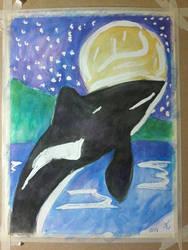 orca 56