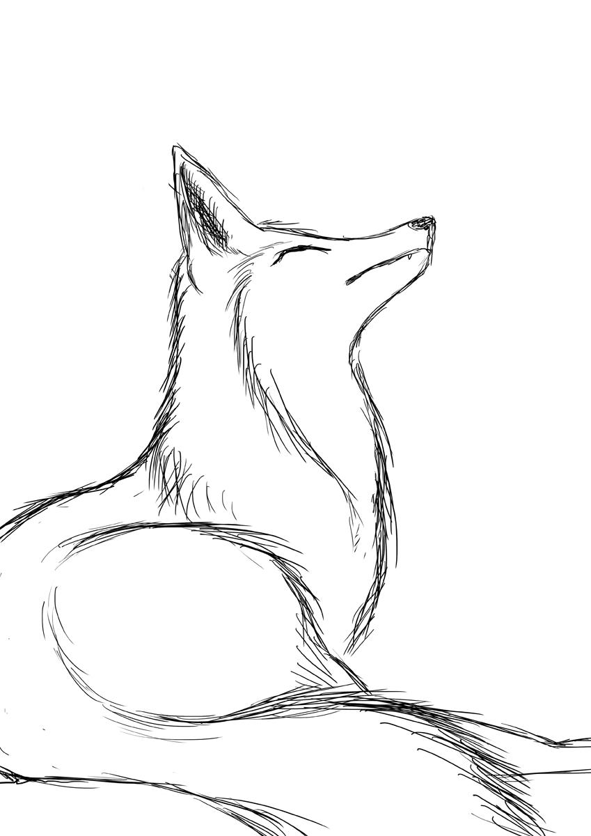 Line Drawing Fox : Practicing fox sketch by firerai on deviantart