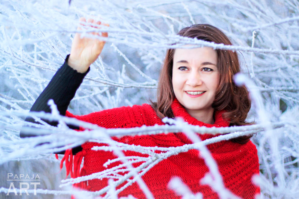 Beauty of winter by papaja94