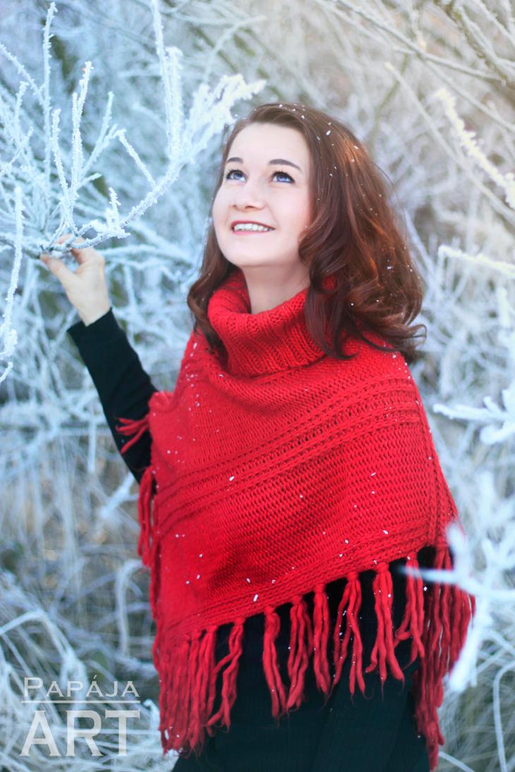 Beauty of winter 2 by papaja94