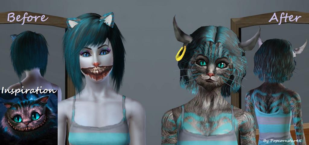 Mods Sims  Cat