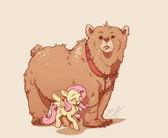 Bear Responsibilities