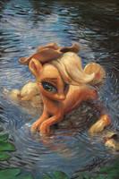 Water Apple Pony