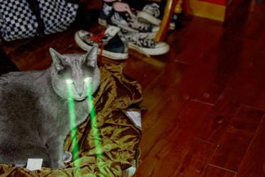 Lasercat, version 2