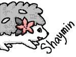 Shaymin - Flipnote DSi