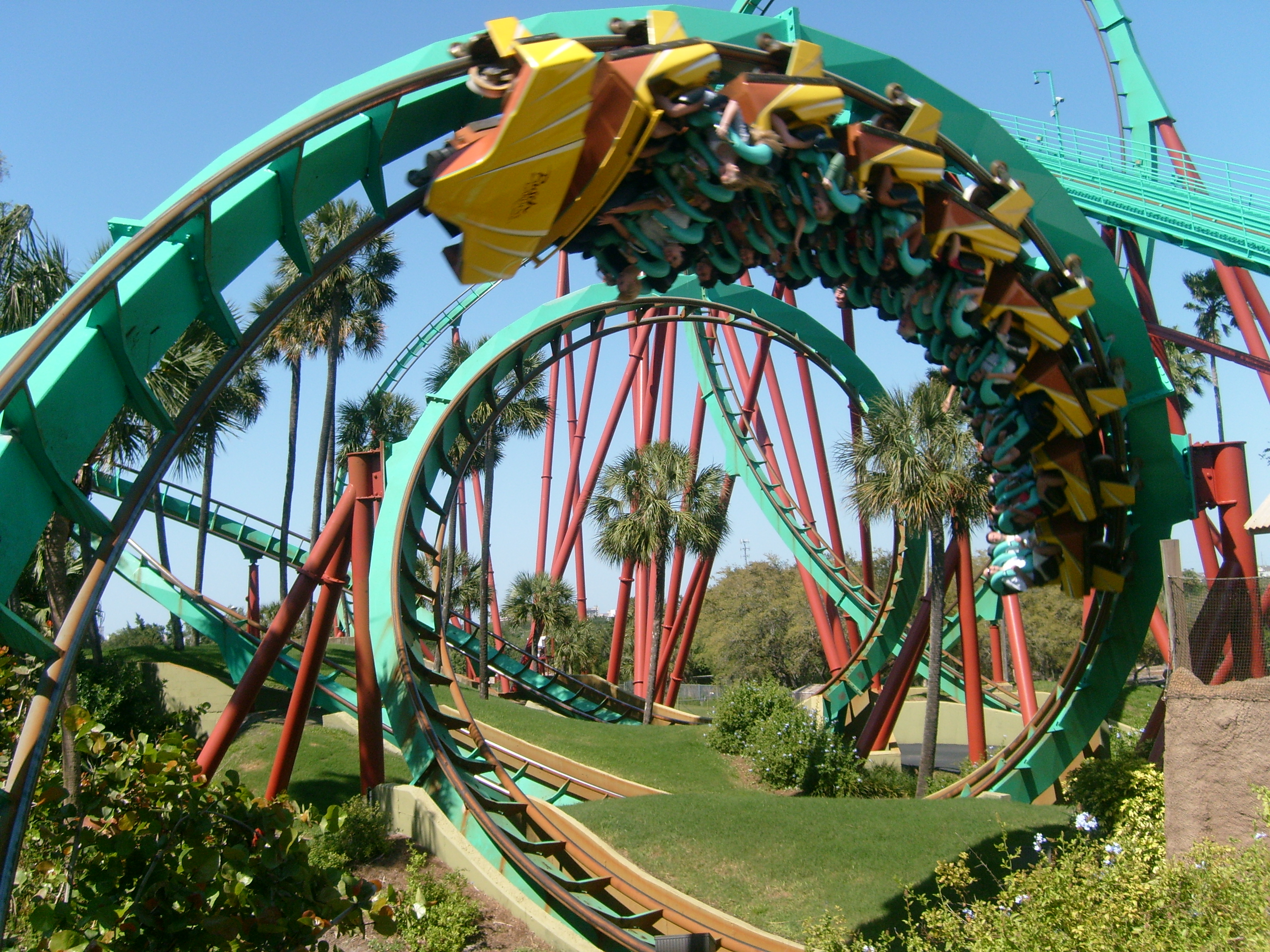 Perfect ... Kumba   Busch Gardens Tampa Florida USA By Phi1997