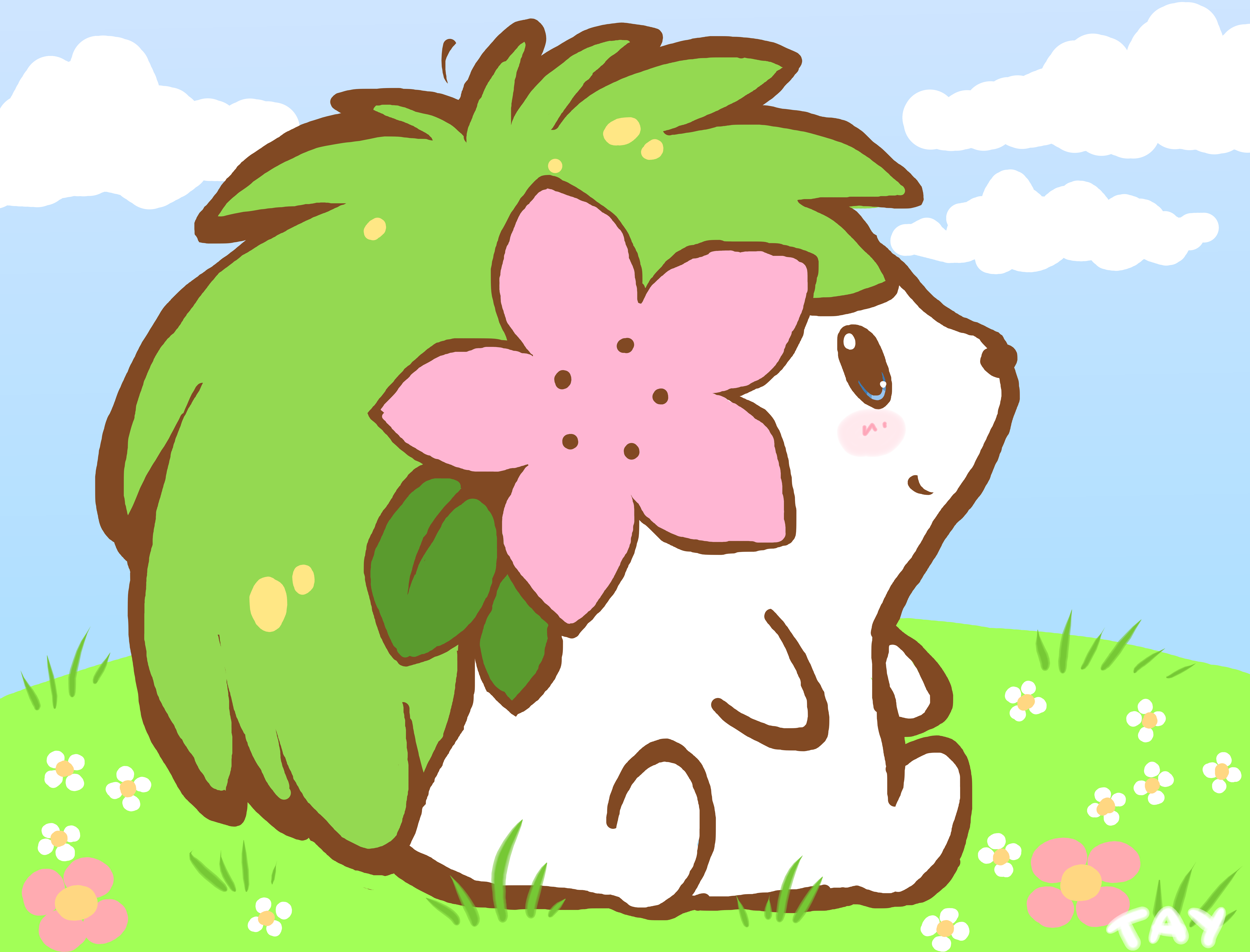 Shaymin - Fastest Pokemon