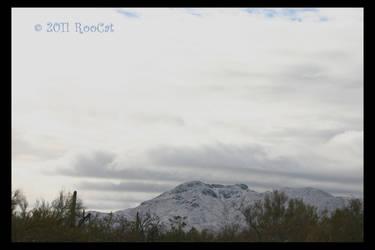 Snowy Wasson Peak Tucson Mts. by RooCat