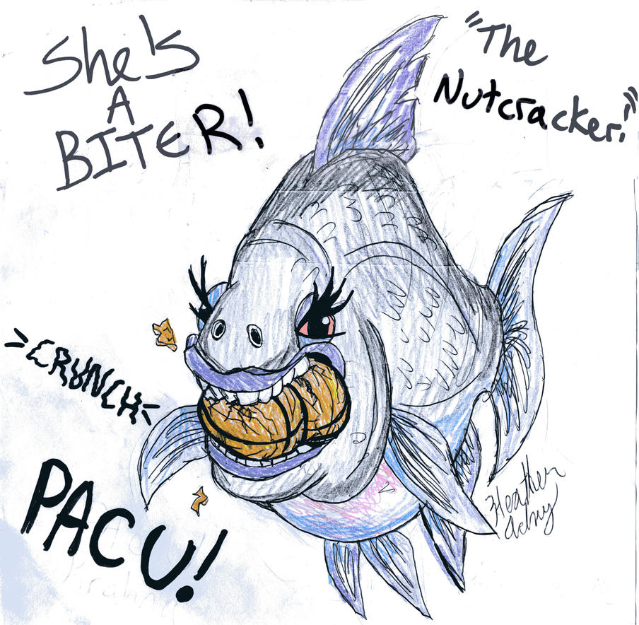 The Terrible Pacu! by Tibby101