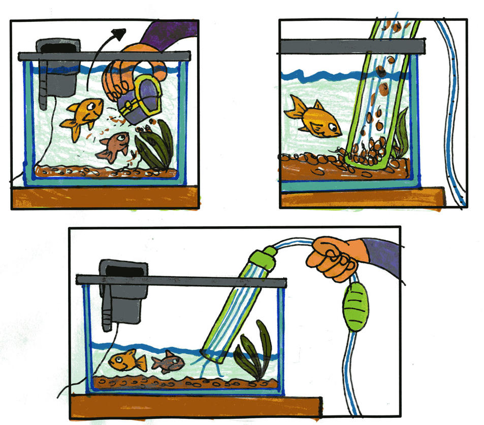 How to Clean your Fishtank by Tibby101