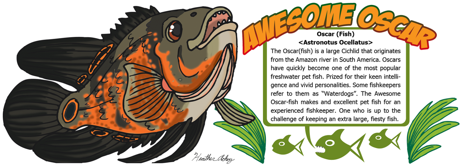 Oscarfish Various Product Design by Tibby101