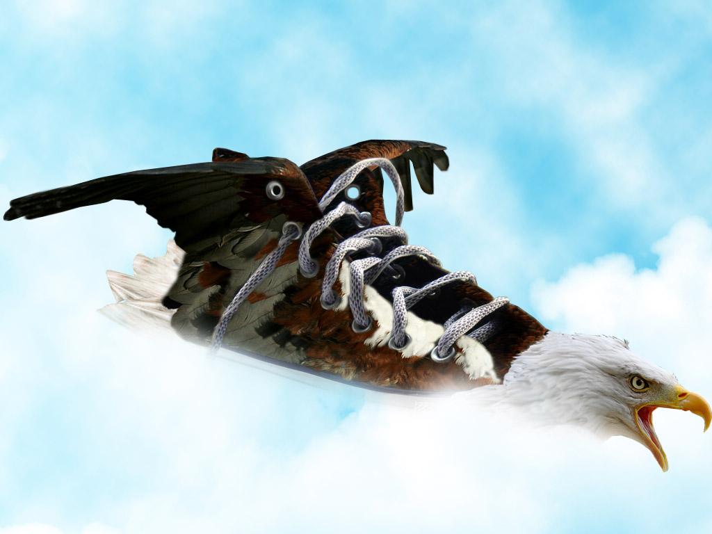 eagle shoe... by caglarsasmaz