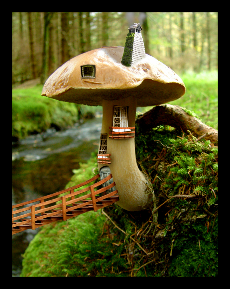 Mushroom House by caglarsasmaz