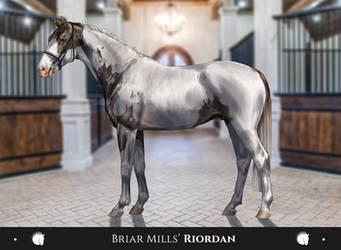 Briar Mills' Riordan by Aliyska