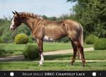 Briar Mills' DREC Chantilly Lace