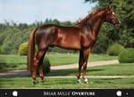 Briar Mills' Overture
