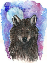 Black Wolf by wolfmoonie