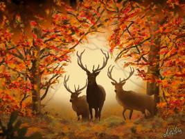 Autumn wisdom