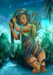 The water-bearer : Aquarius