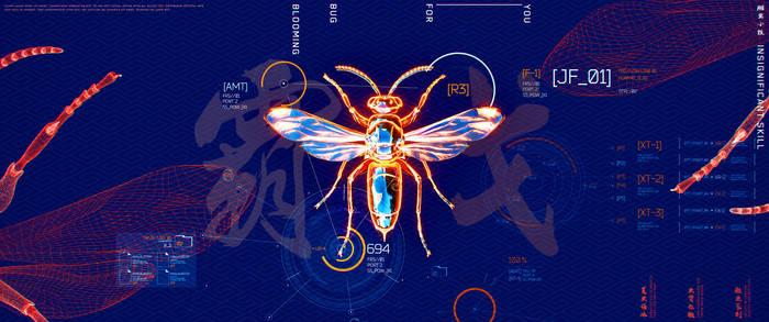 Bug X-ray