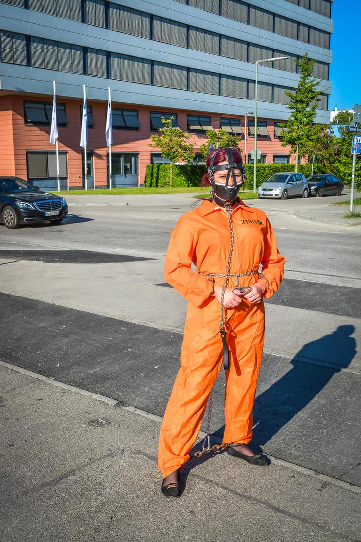 Prisoner Transfer precautions by Captivekink