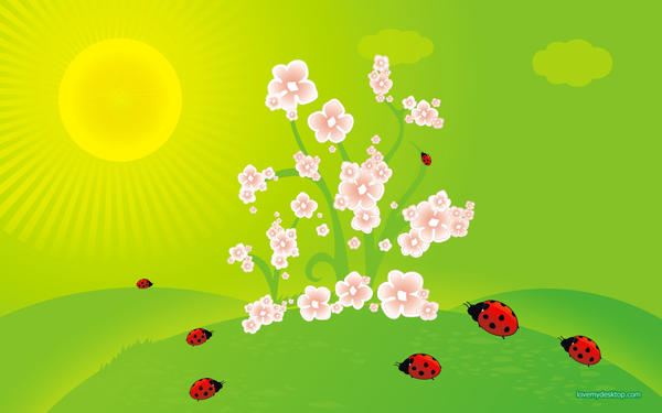 spring ladybirds vector illustration