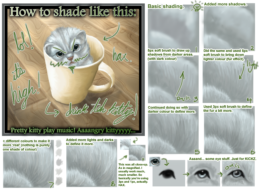 Crappish Fur Shading Tutorial by Anuwolf