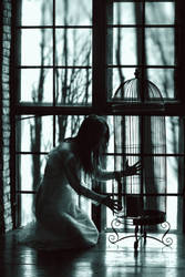An empty cage by NatalieVing