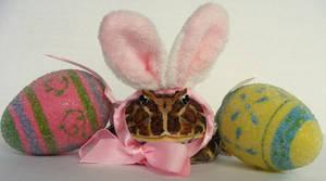 I'm The Happy Easter RIBBIT
