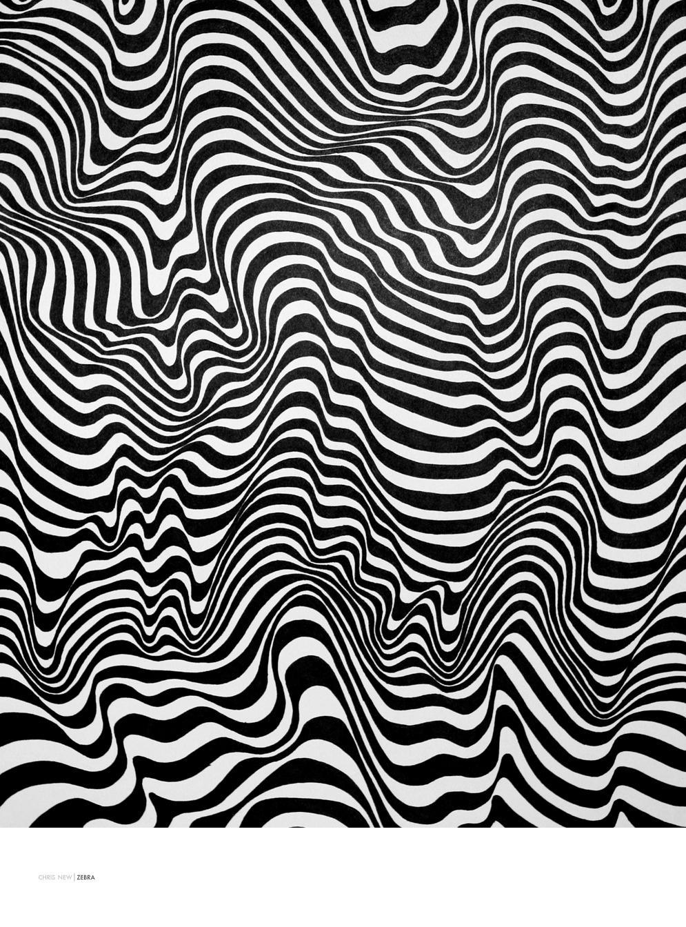 Zebra by seenew