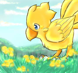 Chocobo And Flowers