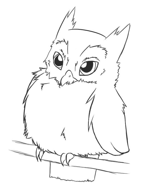 Line Art Owl : Owl lineart by deceptiveshadow on deviantart