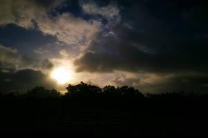 Morning Walk Project 127 by SaraQ2