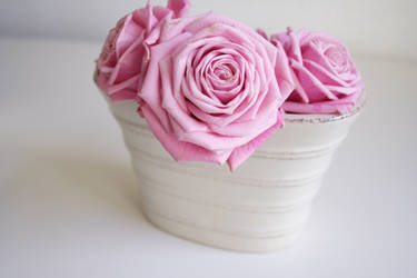 Pink Roses IV by onelook