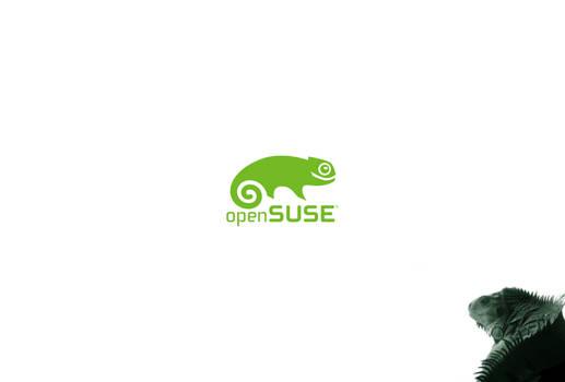 Lizard Suse
