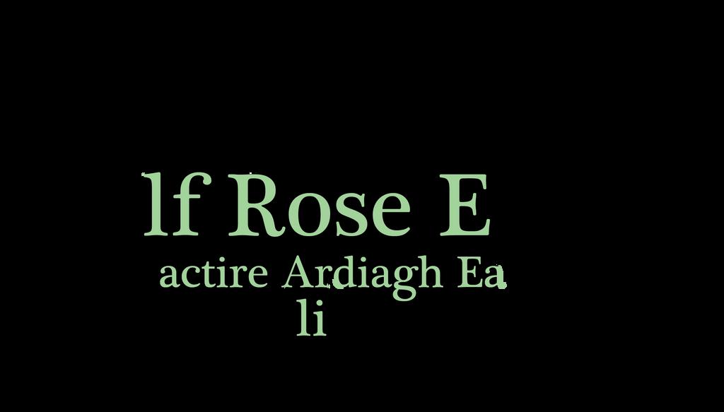 MAE Official Logo