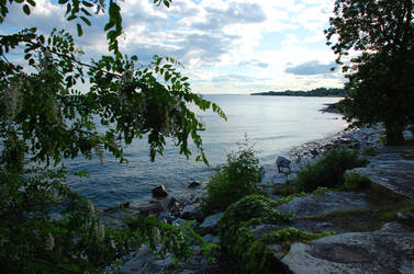 The Lake II