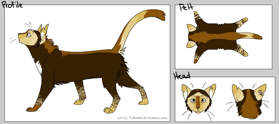 warrior cats windclan leader by noonecaresaboutit on