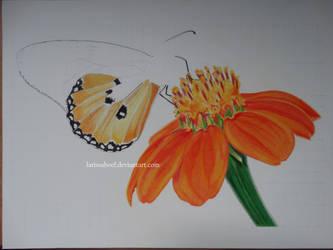 WIP II - Butterfly on a flower by LarissaBoef