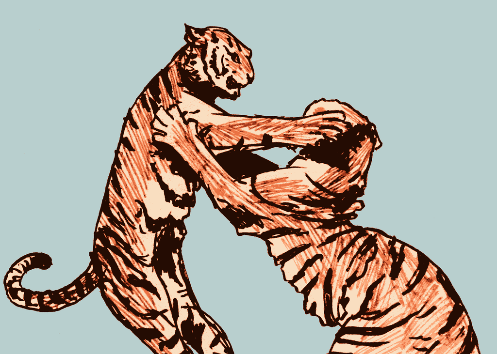 Tiger Fight by SamWallaceArtisan