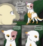 Daisy and Brightheart: Scars