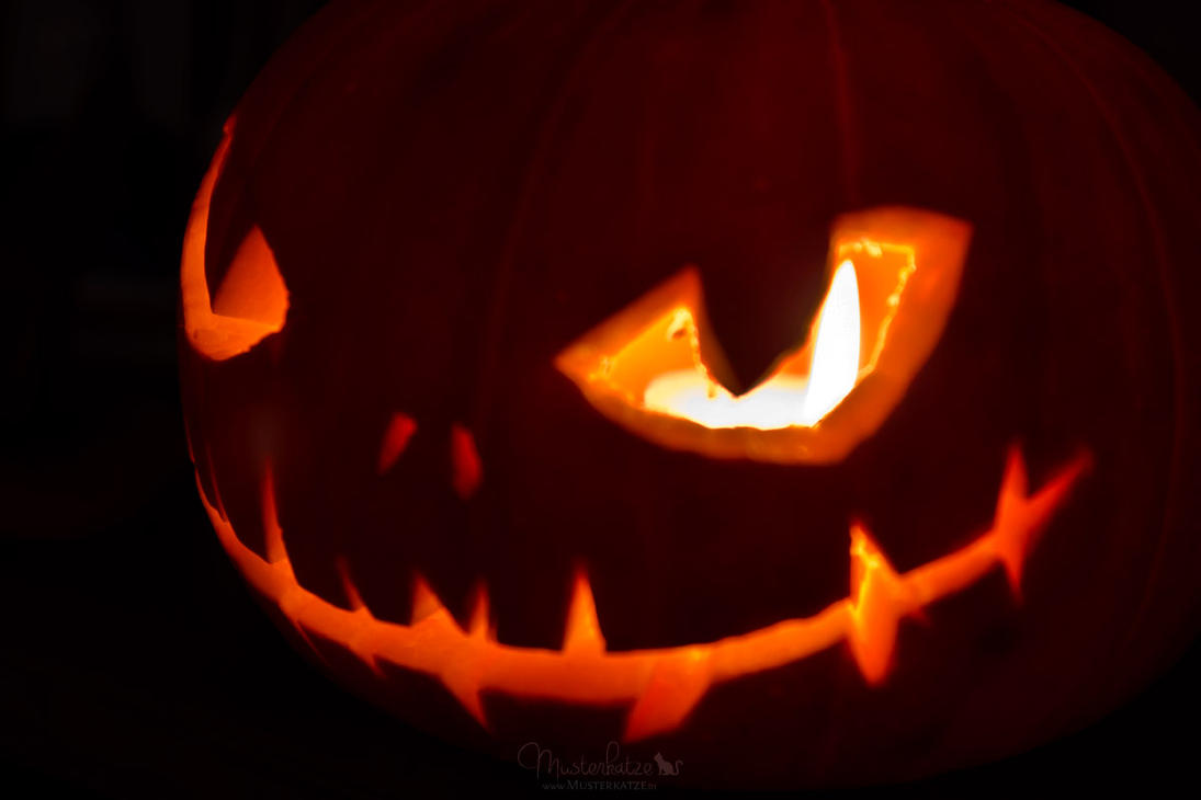 47.52 Happy Halloween by Musterkatze