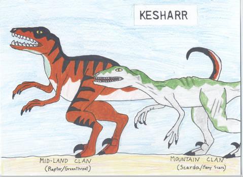 Kesharr portrait